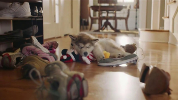 PetSmart TV Spot, 'Pet Toys' - Thumbnail 4