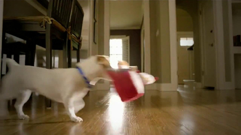PetSmart TV Spot, 'Pet Toys' - Thumbnail 6