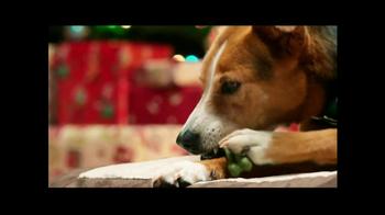 PetSmart TV Spot, 'Brushing Excitement' - Thumbnail 6