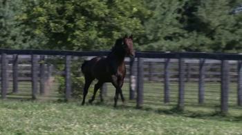 Winstar Farm, LLC TV Spot, 'Colonel John' - Thumbnail 2