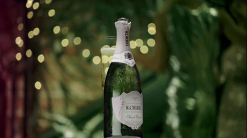 Korbel TV Spot, 'The Occasion' Song By Les Enfants - Thumbnail 4