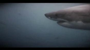 Oceana TV Spot,'Great White Sharks' Featuring January Jones - Thumbnail 9