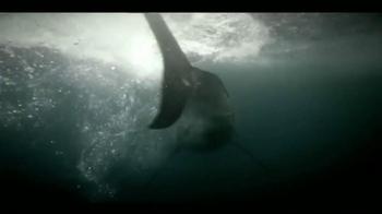 Oceana TV Spot,'Great White Sharks' Featuring January Jones - Thumbnail 7