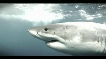Oceana TV Spot,'Great White Sharks' Featuring January Jones - Thumbnail 8