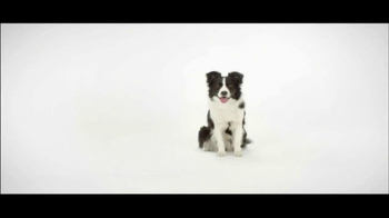 Wellness Pet Food TV Spot, 'GMO-Free' - Thumbnail 1