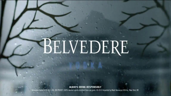 Belvedere TV Spot, 'Know the Difference'