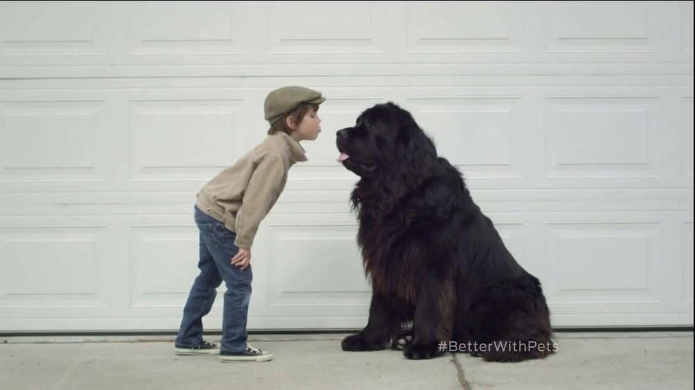 Purina TV Commercial, 'Better with Pets'