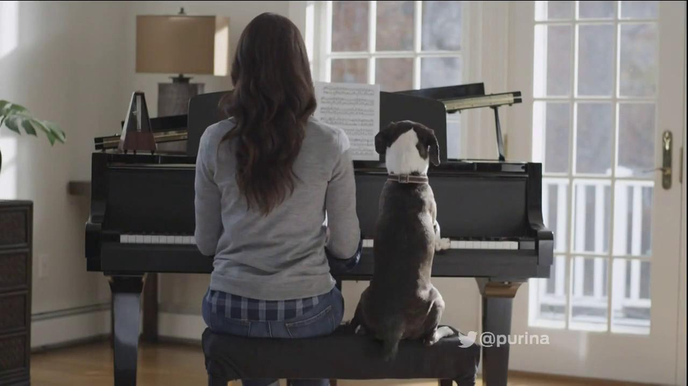 Purina TV Commercial, 'Dog Playing Piano'