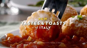 Olive Garden Tastes and Toasts of Italy TV Spot - 1031 commercial airings