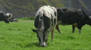 Kerrygold Pure Irish Butter TV Spot - Thumbnail 4