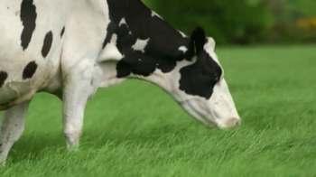 Kerrygold Pure Irish Butter TV Spot - Thumbnail 7