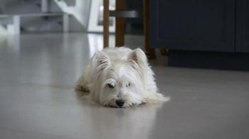 Skechers GoWalk 2 TV Spot, 'Dogs' - Thumbnail 1