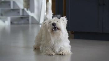 Skechers GoWalk 2 TV Spot, 'Dogs' - Thumbnail 3