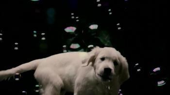 Nickelodeon Bubble Puppy App TV Spot - Thumbnail 2