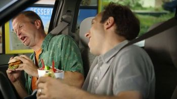 Sonic Drive-In Spicy Chicken Sandwiches TV Spot, 'Flavor Roller Coaster' - 1356 commercial airings