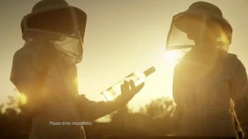 Smirnoff Wild Honey Vodka TV Spot, Song by Problem Child - Thumbnail 3
