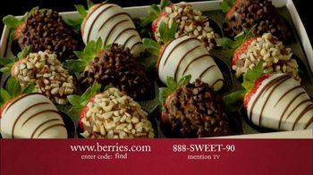 Shari's Berries TV Spot, 'Unique Christmas Gift' - Thumbnail 5