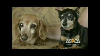 ASPCA TV Spot, 'Be Prepared'