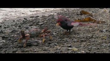 Walking with Dinosaurs - Alternate Trailer 21