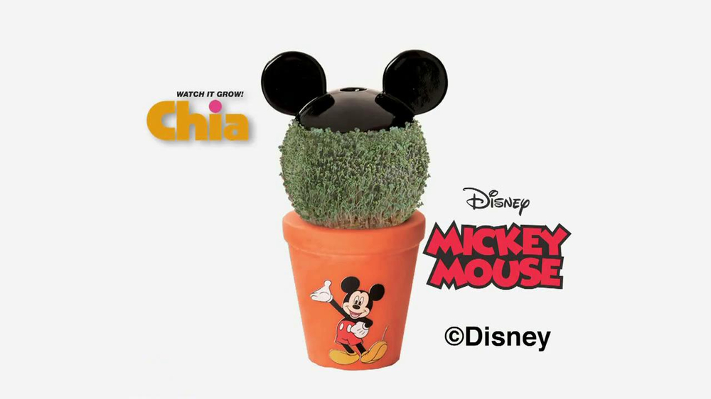 Chia Pet Mickey Mouse Tv Spot Ispottv
