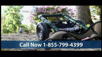 Humane Society TV Spot, 'Season's Greetings' - Thumbnail 5