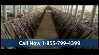 Humane Society TV Spot, 'Season's Greetings' - Thumbnail 7