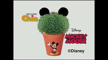 Chia Pet TV Spot, 'Watch it Grow' - Thumbnail 5
