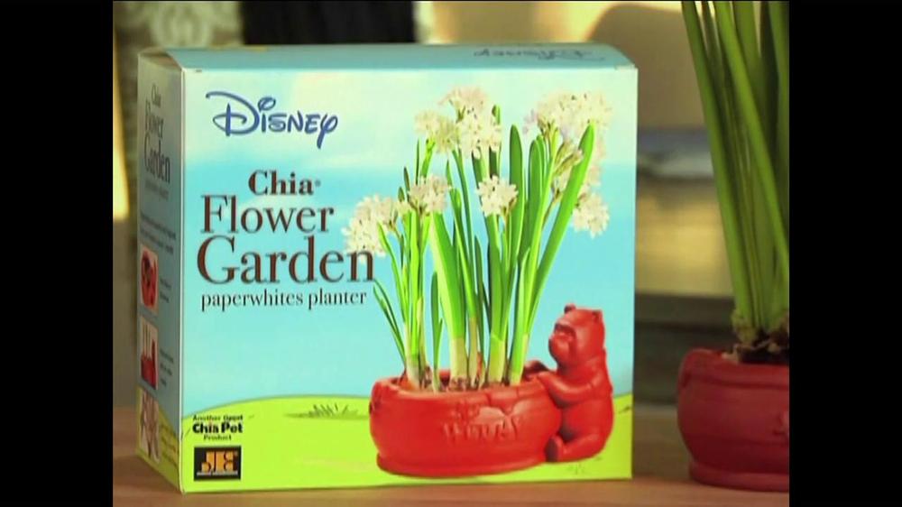 Chia Pet Winnie The Pooh Flower Garden Tv Spot Ispottv