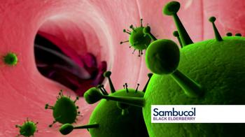 Sambucol Black Elderberry TV Spot Featuring Soleil Moon Frye - Thumbnail 5