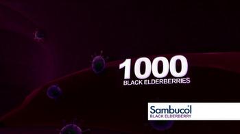 Sambucol Black Elderberry TV Spot Featuring Soleil Moon Frye - Thumbnail 6