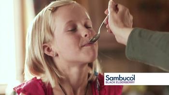 Sambucol Black Elderberry TV Spot Featuring Soleil Moon Frye - Thumbnail 8