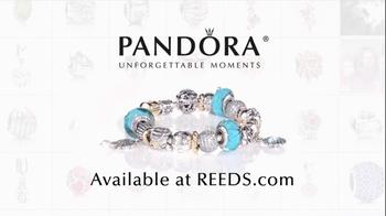 REEDS Jewelers TV Spot, 'Beautiful Day' - Thumbnail 10