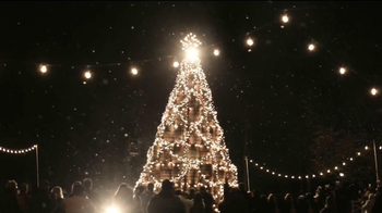 Jack Daniel's TV Spot, 'Barrel Tree' - Thumbnail 7
