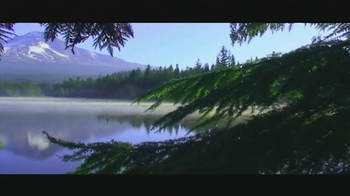 Arbor Day Foundation TV Spot, 'Replanting Forests' - Thumbnail 3