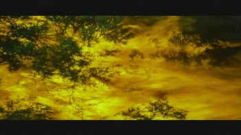 Arbor Day Foundation TV Spot, 'Replanting Forests' - Thumbnail 6