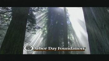 Arbor Day Foundation TV Spot, 'Replanting Forests' - Thumbnail 7