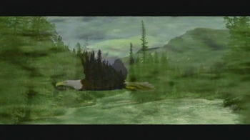 Arbor Day Foundation TV Spot, 'Replanting Forests' - Thumbnail 9