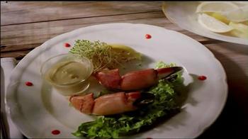The Florida Keys & Key West TV Spot, 'Hunger' - 198 commercial airings