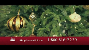 Balsam Hill TV Spot, 'Hassle Free'