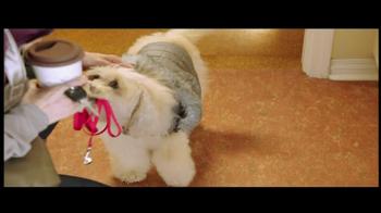 PetSmart Beat the Rush Sale TV Spot  - Thumbnail 3