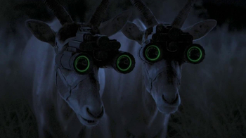 GEICO TV Spot, 'Antelope with Night Vision Goggles' - 2660 commercial airings