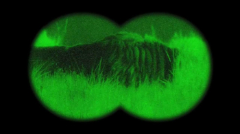 GEICO TV Spot, 'Antelope with Night Vision Goggles' - Thumbnail 4