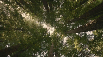 Nature Valley Granola Thins TV Spot, 'Forest' Song by Emily Moldy - Thumbnail 1