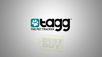Tagg TV Spot, 'Lost Dogs' - Thumbnail 10