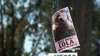 Tagg TV Spot, 'Lost Dogs' - Thumbnail 2