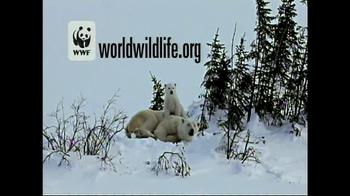 World Wildlife Fund TV Spot, 'Be the Voice Polar Bears' - Thumbnail 6