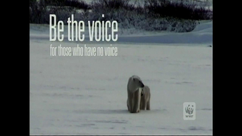 World Wildlife Fund TV Spot, 'Be the Voice Polar Bears' - Thumbnail 5