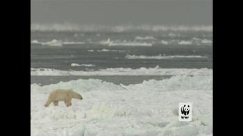 World Wildlife Fund TV Spot, 'Polar Bears: Look Closely' - Thumbnail 1