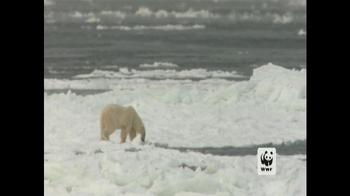 World Wildlife Fund TV Spot, 'Polar Bears: Look Closely' - Thumbnail 4