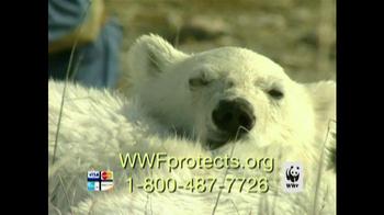 World Wildlife Fund TV Spot, 'Polar Bears: Look Closely' - Thumbnail 5